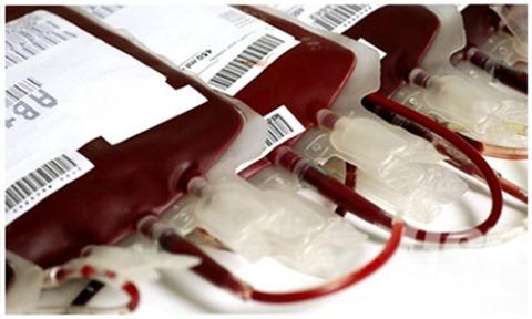 sangue doacao